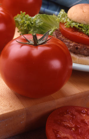 big-beef tomatoes in container