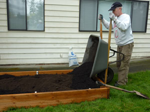Filling the raised bed with soil