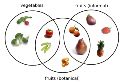 Tomato Fruit or Vegetable Diagram